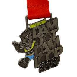 Dam tot Dam kids run medal